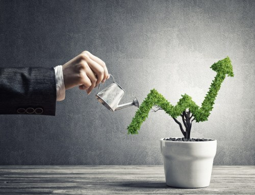 Ensuring your software supports your business through change and growth